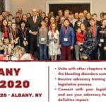 Albany Days 2020